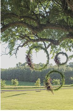 Great wedding decoration for outdoor wedding venues! Hula hoop with neon ribbon and flowers for photo booth frame! Garden Wedding, Diy Wedding, Wedding Ceremony, Rustic Wedding, Wedding Flowers, Dream Wedding, Wedding Ideas, Ceremony Backdrop, Backdrop Wedding