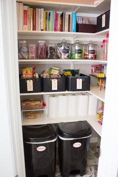 pantry/garbage closet | ... by California Closets , but it is a step in the right direction