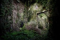 Abandoned House in Ireland by Cormac Scanlan #urbandecay #overgrown