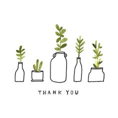 Day 100!! Thank you all so much for following along, and for all of the sweet comments along the way, they meant so much to me! #JBP100Plants #the100dayproject #APlantADay