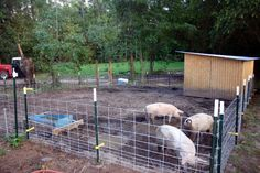 My move~able pig pen. ~Chrissy