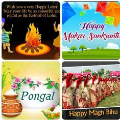 Happy Lohri, Festivals, Birthday Cake, Joy, Desserts, Birthday Cakes, Deserts, Being Happy, Dessert
