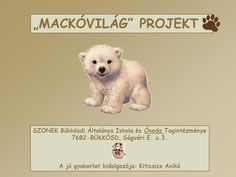 Projects For Kids, Kindergarten, Teddy Bear, Toys, Animals, Bears, Projects, Activity Toys, Kids Service Projects