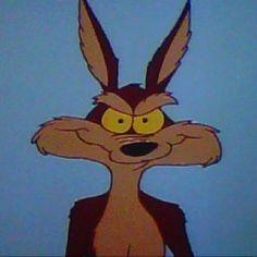 Wile E Coyote.......Genius.