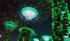 #marinabay #marinabaysand #singapore #gardens #nightshow