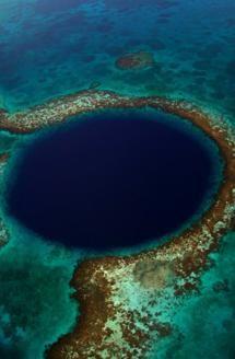 Diving in Belize!