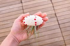 Air Plant Jellyfish pattern by ChiWei Ranck – Amigurumi Free Pattern İdeas. Crochet Animal Patterns, Stuffed Animal Patterns, Amigurumi Patterns, Crochet Animals, Easy Crochet, Free Crochet, Crochet Ideas, Succulent Hanging Planter, Crochet Kitchen