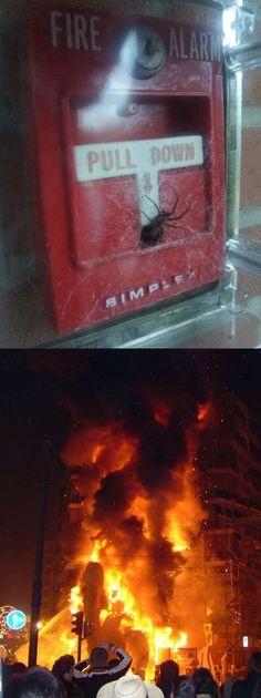 Just let it burn...