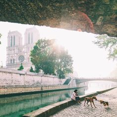 Strolling along the banks of the Seine in Paris