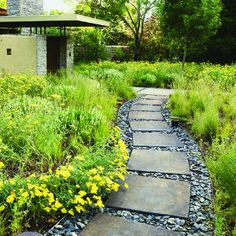 Creating textures    Fractured shale fills gaps between concrete pavers in this yard; yarrow and grasses soften the path's edges.