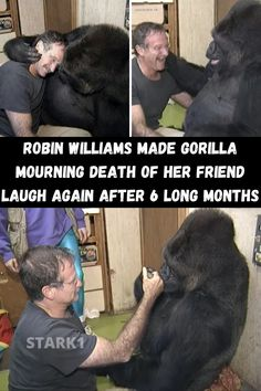 It was 6 years ago when Robin Williams' death shocked the world. Lots of people were saddened that he took his own life, as we had known him for making other people happy. His legacy still remains in our hearts.