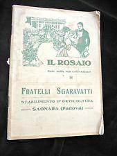 botanica floricoltura Sgaravatti Il rosaio Saonara (Padova) 1935