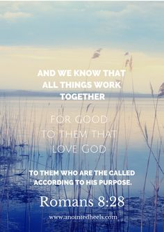 """Rom 8:28 """"And we know that all things work together for good to them that love God, to them who are the called according to his purpose."""""""