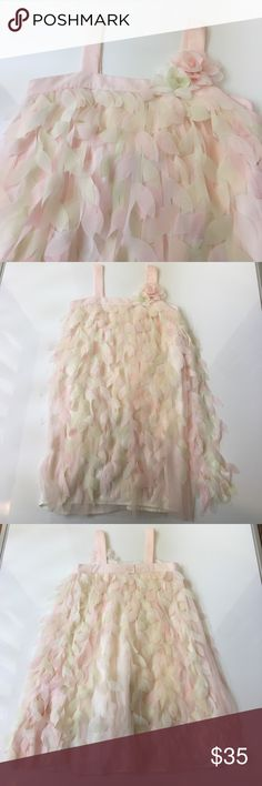Biscotti Petal Dress Size 10 New Without Tag When I saw this dreamy dress I just had to get it for my daughter. It has a lining layer, then tulle, and on top, free flowing strips of petals all around, perfect for twirling. Unfortunately my daughter never wore the dress. She grew so much this year, she outgrew it before spring arrived! The tag is missing from the dress, but I was buying my daughter size 10 clothes for this spring (she suddenly needs 12s!!), so this is a 10. Simply adorable…