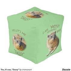 "Yes, It's me, ""Dassy"" Cube Pouf"