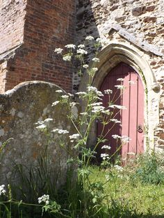 Church Door, St Mary,Fordham St. Mary, West Norfolk. I particularly liked the faded pink door and thought that the image of the gravestone amongst the slightly wild looking grass and flowering 'weed's was particularly evocative.