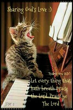 'Psalms 150  Let every thing that hath breath praise Yahweh!