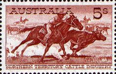 Cattle Featuring the Northern Territory cattle industry, showing an aboriginal stockman cutting out a steer. Decimal, Stamp Values, Postcard Postage, Rare Animals, Strange Animals, Cowboy Ranch, Australian Painting, Pet Rats, Vintage Stamps