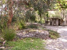 Bush garden