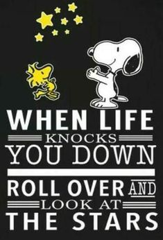 Snoopy and Woodstock Snoopy Images, Snoopy Pictures, Charlie Brown Quotes, Charlie Brown And Snoopy, Peanuts Quotes, Snoopy Quotes, Peanuts Cartoon, Peanuts Snoopy, Snoopy Cartoon