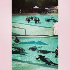本來念住玩跳傘天氣原因飛唔到甘就試下一直想玩既深潛ok我覺得我呢世都唔會再嘗試了呱 #iger#travel #blogger #party #hoilday #happy#dive #diving #cool#swimming #pool #fashionmodel #model #instafashion  #fashionblogger#fashionmodel #instamood #instadaily #greatbarrierreef #smile #pic#photography#australia #photooftheday#shooting #style #goodnight #makeup#like4like by co_zkk http://ift.tt/1UokkV2