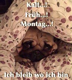 Kalt... Früh... Montag...