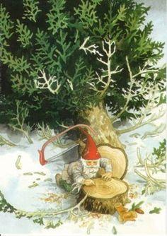 Kabouter telt de jaarringen van de kerstboom