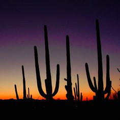 Tucson, Arizona sunset (Photo via Instagram by@akav8er - Click on the pin for info about Tucson and places to stay.)