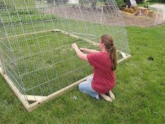Hoop Coop from cattle panels
