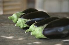 Aubergines are becoming a more common veggie to have in your kitchen, and with new varieties being developed to flourish in temperate climates, they're easier to grow at home than ever before. Garden Works, Growing Grapes, Garden Guide, Gardening, Eggplant, Garden Plants, Pesto, Helpful Hints, Garlic