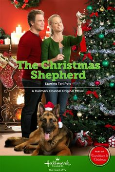 """Its a Wonderful Movie - Your Guide to Family Movies on TV: """"The Christmas Shepherd"""", a Hallmark Movie Channel Christmas Movie"""