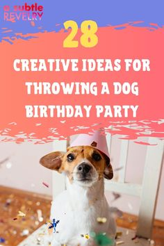 Nowadays celebrating your dog's birthday is just as important as celebrating your kid's. A Subtle Revelry has some great birthday party ideas for your beloved puppy. Check out our list of over two dozen creative ideas that include decorations, treats and fun games for everyone. Our guide includes 28 different party features like treats and games that your dog can enjoy and add to the celebration mood. So check out our report. You can download here… #dogbirthday #dogbirthdayparty #fundogparty Dog Birthday, Birthday Parties, Funky Hats, Colorful Nail Art, Diy Wax, Balloon Backdrop, Love Balloon, Holiday Candles, Colourful Balloons