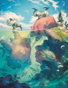 "Kristen Plescow (in case you're wondering, the big fish species is Ocean Sunfish, or ""mola mola"")"
