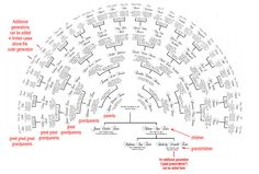 Personalized Family Tree Fan Chart--7 printed copies. $39.95, via Etsy.