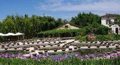 Le jardin des nénuphars de Latour-Marliac, véritable peinture vivante est un petit paradis pour les amoureux de botanique et d'harmonie florale.