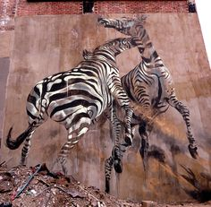 South African Artist Faith47.  Paint on concrete - Zebra mural in central Johannesburg, South Africa. I was attracted to this piece mainly because of it's size, it appears to be 20 to 30 feet tall.  Faith47 relates much of her work to social, cultural, and ecological issues as in this piece where she displays the beauty of two Zebras.  Many people travel to South Africa to hunt Zebras for trophies, I think this piece is meant to make those people think twice about what they are doing.