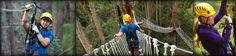 zipline Kohala Canopy Tour. 3 hrs. $159. 9 lines. 5 bridges. Kohala Zipline's Kohala Canopy Adventure features elevated suspension bridges, soaring tree platforms and thrilling ziplines. From the moment you enter the aerial trekking course, you'll be enthralled by the magic of Kohala. ginger, guava, coffee, kukui nut, & eucalyptus plants. Exclusive features: twin whisper lines. smooth stop braking. nearby. (w/ waterfall swim: $250, 8 hrs)