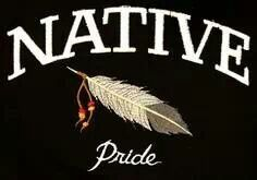 Why are there non native people pinning this especially Americans. Native American Cherokee, Native American Wisdom, Native American Pictures, Native American Beauty, American Indian Art, Native American History, American Indians, American Symbols, Cherokee Nation