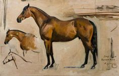 Studies of Horses by Alfred James Munnings...