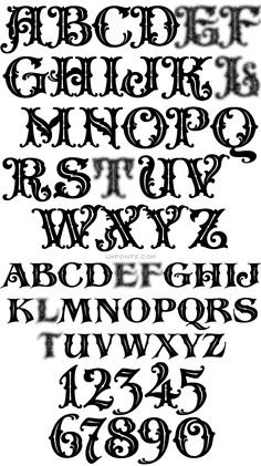 The second LHF exclusive font from veteran sign artist, Steve Contreras is reminiscent of old cigar labels and turn of the century billheads. Font set includes decorative and bold versions. Lettering Styles Alphabet, Tattoo Fonts Alphabet, Tattoo Lettering Styles, Graffiti Lettering Fonts, Alphabet Style, Hand Lettering Alphabet, Graffiti Alphabet, Typography Letters, Lettering Design
