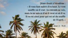 Jean 3 : 7b-8