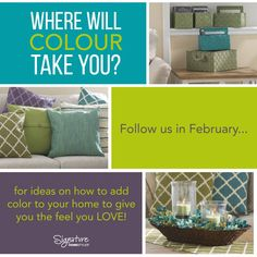 Did you know that you could get organization baskets in these awesome colors (colours)? So excited about Signature Homestyles 2016 product line!