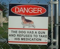 Best security system EVER!