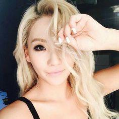 Hair Color (Platinum Blonde with warm undertones)