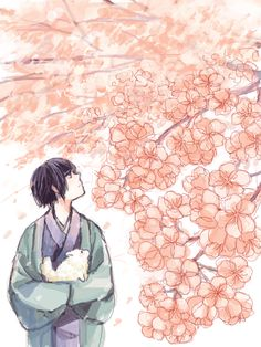 Hetalia - Japan : Spring Blossoming Sakura