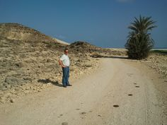 This palm tree looks like a giant pineapple.  In Salalah, Oman with my fabulous husband.