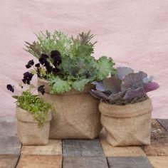 Burlap Pot Cover in Garden Planters at Terrain