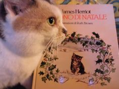 Book: IL DONO DI NATALE  Author: JAMES HERRIOT  Year:1987 Pub: RIZZOLI