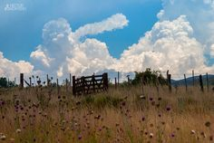 algunas nubes...