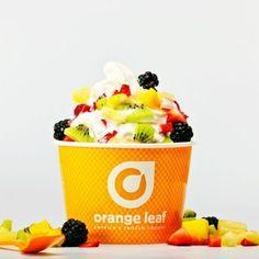 Orange Leaf frozen yogurt open in Roswell, GA is the BEST frozen yogurt I have EVER had!